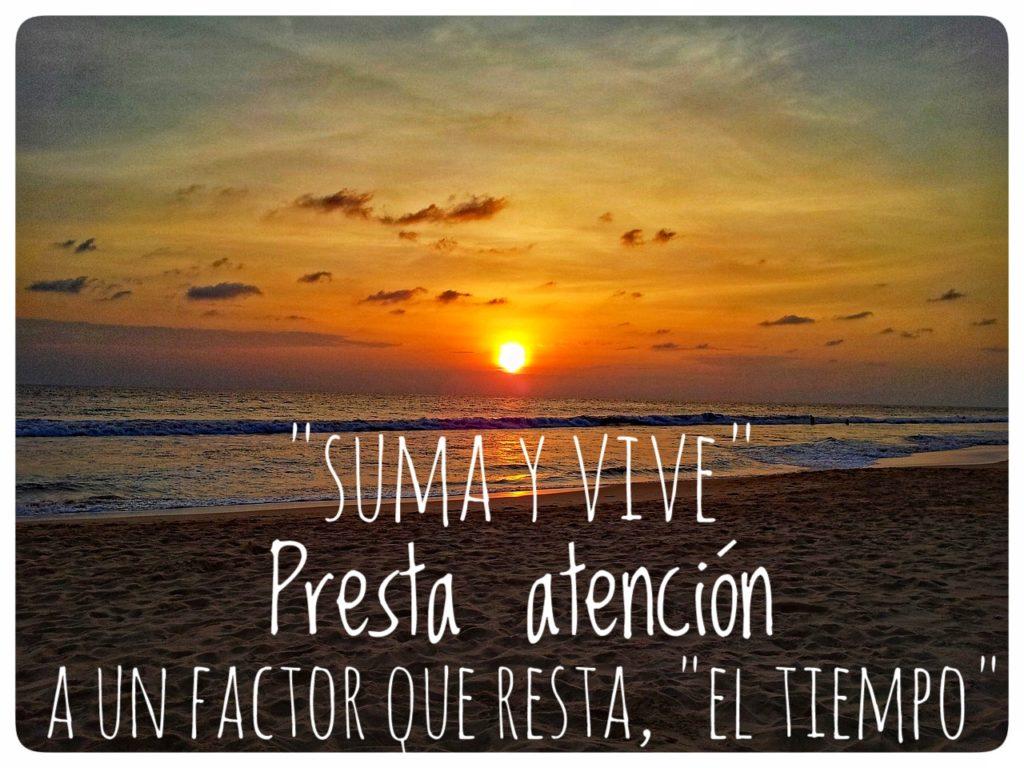 Catálogo Suma y Vive